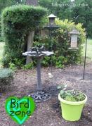Bird Zone